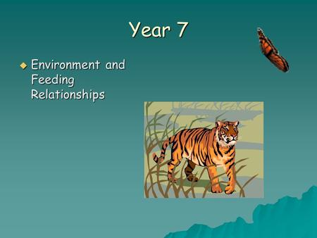 Year 7  Environment and Feeding Relationships. Objectives In today's lesson you will learn:  About the different habitats organisms live in.  How to.