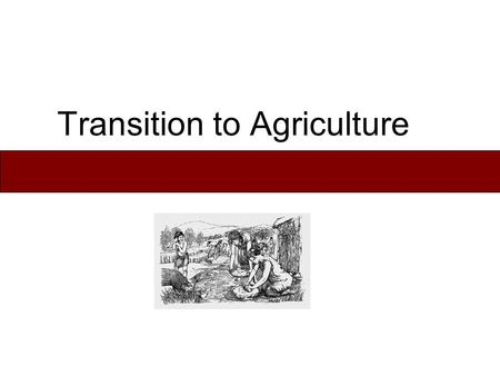 Transition to Agriculture. Subsistence Patterns - Characteristics Food Foraging: hunting, fishing, & gathering wild plant foods. Horticulture: cultivation.