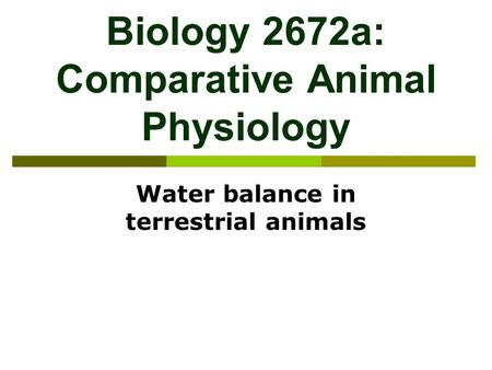 Biology 2672a: Comparative Animal Physiology Water balance in terrestrial animals.