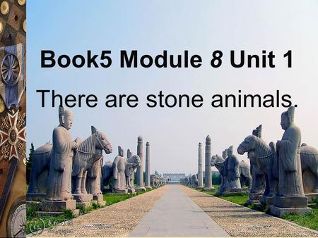 There are stone animals. Book5 Module 8 Unit 1.
