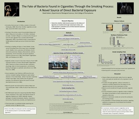  In conclusion, bacteria present in cigarettes can be transferred into mainstream smoke, presenting a novel means for direct bacterial exposure among.