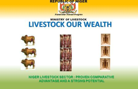 REPUBLIC OF NIGER Fraternité Travail Progrès MINISTRY OF LIVESTOCK LIVESTOCK OUR WEALTH NIGER LIVESTOCK SECTOR : PROVEN COMPARATIVE ADVANTAGE AND A STRONG.