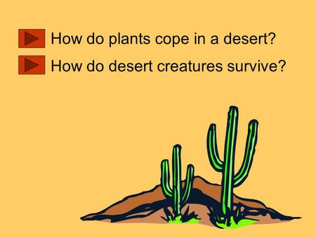 How do plants cope in a desert? How do desert creatures survive?
