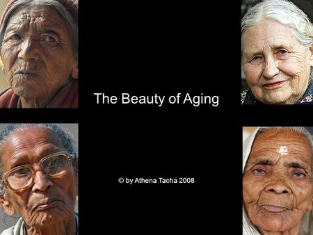 The Beauty of Aging © by Athena Tacha 2008. 90-year old Julie, one of the few surviving Yaghans from Tierra del Fuego, is as handsome as the bark of this.