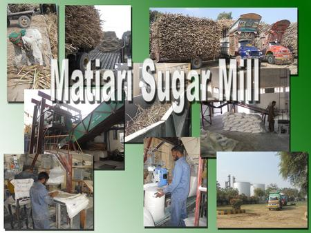Matiari Sugar mill Visit 15-1-2012. The visit of Matiari Sugar mill had started from the morning of Saturday 15th January, 2012. After reaching the Matiari.