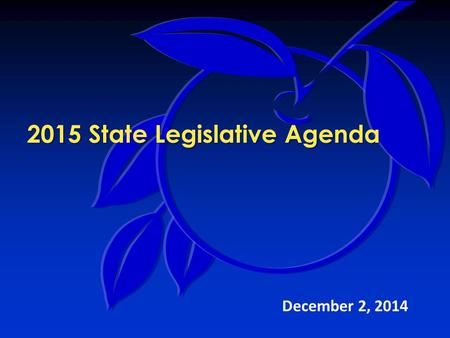 2015 State Legislative Agenda December 2, 2014. 2015 Legislative Agenda Legislative Team Mission:  Identify proposals that impact the county's provision.