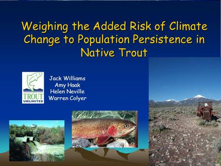 Weighing the Added Risk of Climate Change to Population Persistence in Native Trout Jack Williams Amy Haak Helen Neville Warren Colyer.