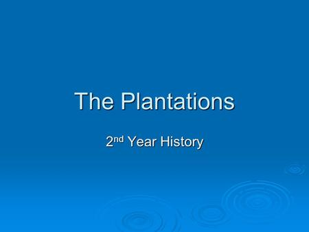 The Plantations 2nd Year History.