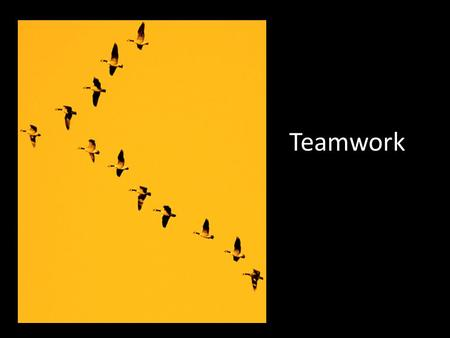 Teamwork. Can be in person or virtually. Organizing a Team Project Appoint a group manager Define a clear and definite goal Identify the type of document.