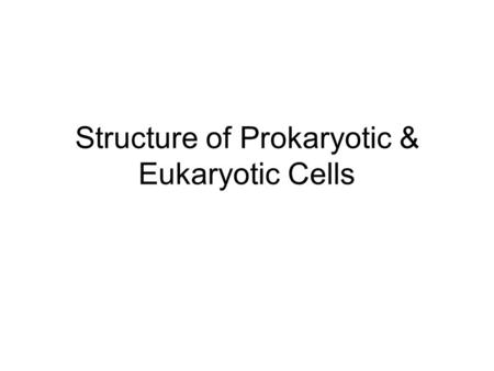 Structure of Prokaryotic & Eukaryotic Cells. Review of Prokaryotic & Eukaryotic Cells Nucleus vs nucleoid DNA : circular vs linear, presence of histones.