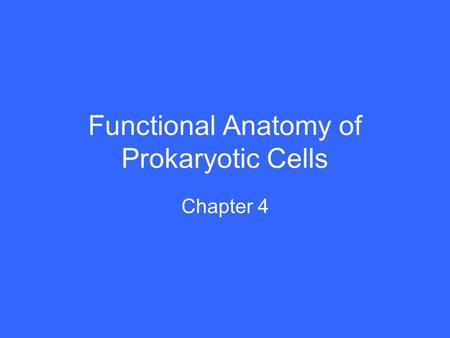 Functional Anatomy of Prokaryotic Cells Chapter 4.