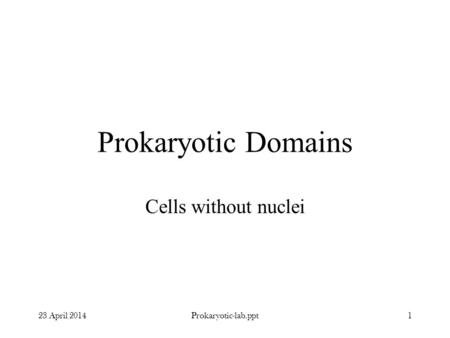 Prokaryotic Domains Cells without nuclei 23 April 20141Prokaryotic-lab.ppt.