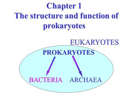 Chapter 1 The structure and function of prokaryotes EUKARYOTES EUKARYOTES PROKARYOTES BACTERIAARCHAEA.