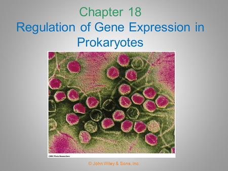 Chapter 18 Regulation of Gene Expression in Prokaryotes © John Wiley & Sons, Inc.
