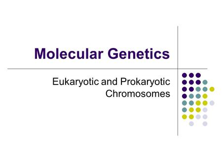 Molecular Genetics Eukaryotic and Prokaryotic Chromosomes.