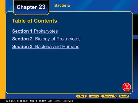 Chapter 23 Table of Contents Section 1 Prokaryotes