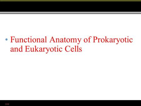 2008 Functional Anatomy of Prokaryotic and Eukaryotic Cells.
