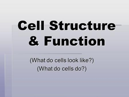 Cell Structure & Function (What do cells look like?) (What do cells do?)