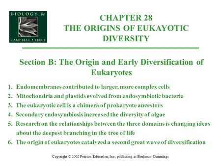 CHAPTER 28 THE ORIGINS OF EUKAYOTIC DIVERSITY Copyright © 2002 Pearson Education, Inc., publishing as Benjamin Cummings Section B: The Origin and Early.
