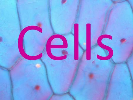 Cells. What is a cell? A cell is the smallest functional unit of life (it is the smallest, most simple thing that can still be considered living) It is.