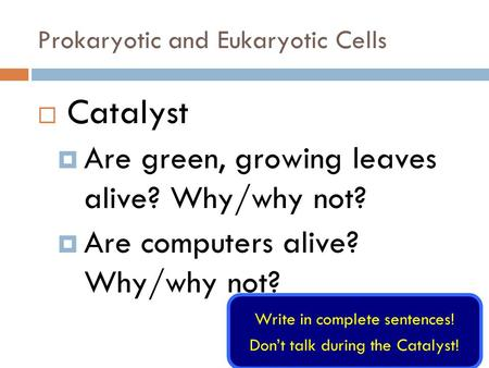 Prokaryotic and Eukaryotic Cells  Catalyst  Are green, growing leaves alive? Why/why not?  Are computers alive? Why/why not? Write in complete sentences!