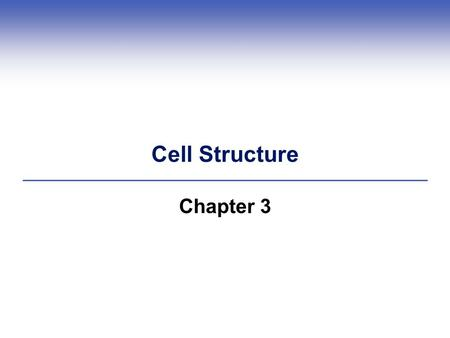 Cell Structure Chapter 3. Examples of Cells 3.2 What, Exactly, Is a Cell? Cells are the fundamental units of all life  All cells start life with a plasma.