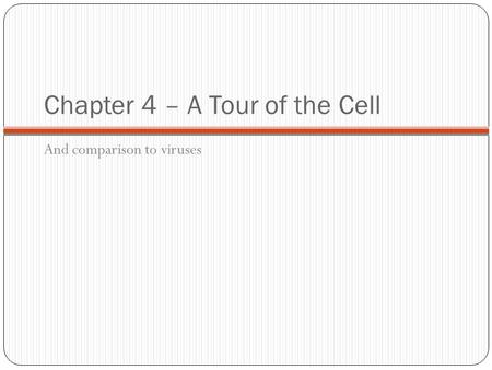 Chapter 4 – A Tour of the Cell