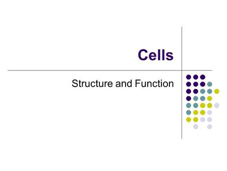 Cells Structure and Function. Fig. 3.2 Life on Earth All living things are made of one or more cells There are two major types of cells Prokaryotic cells.