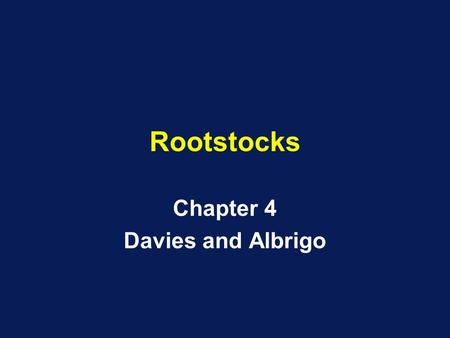 Rootstocks Chapter 4 Davies and Albrigo. Seedling Trees Problems –Protracted Juvenility Thorns Non-precocious –Soil related.