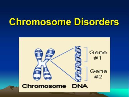 Chromosome Disorders. Classification of genetic disorders  Single-gene disorders (2%)  Chromosome disorders (<1%)  Multifactorial disorders (60%)