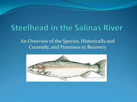 An Overview of the Species, Historically and Currently, and Processes to Recovery.