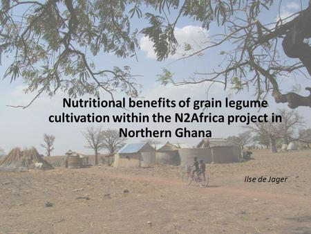Ilse de Jager Nutritional benefits of grain legume cultivation within the N2Africa project in Northern Ghana.