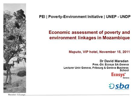 Maradan| © Ecosys PEI | Poverty-Environment Initiative | UNEP - UNDP Economic assessment of poverty and environment linkages in Mozambique Maputo, VIP.