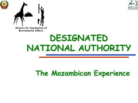 Ministry for Coordination of Environmental Affairs DESIGNATED NATIONAL AUTHORITY The Mozambican Experience.