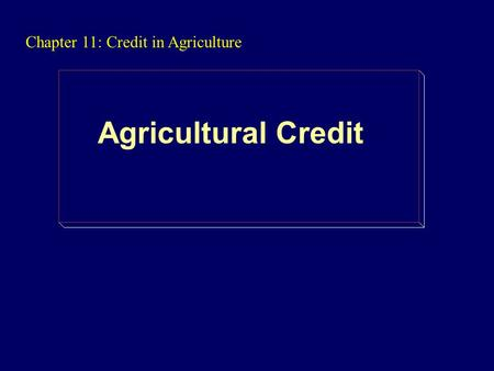 Chapter 11: Credit in Agriculture Agricultural Credit.