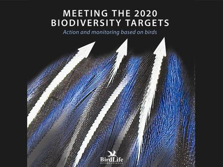 Meeting the 2020 biodiversity targets Action and monitoring based on birds.