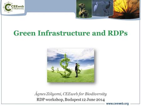 Www.ceeweb.org Green Infrastructure and RDPs Ágnes Zólyomi, CEEweb for Biodiversity RDP workshop, Budapest 12 June 2014.
