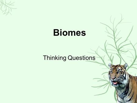 Biomes Thinking Questions.