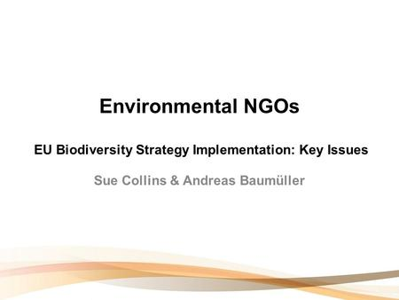 Environmental NGOs EU Biodiversity Strategy Implementation: Key Issues Sue Collins & Andreas Baumüller.
