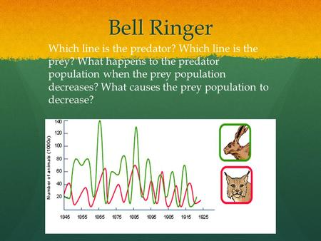 Bell Ringer Which line is the predator? Which line is the prey? What happens to the predator population when the prey population decreases? What causes.