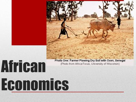 African Economics. South Africa Africa' largest economy Most productive farms Largest diamond exporter The only African country that is highly developed.