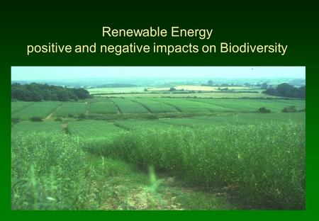 Renewable Energy positive and negative impacts on Biodiversity.