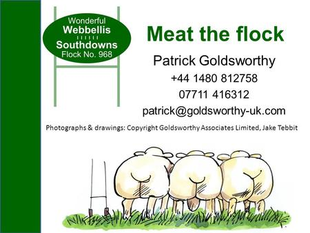Patrick Goldsworthy +44 1480 812758 07711 416312 Meat the flock Photographs & drawings: Copyright Goldsworthy Associates Limited,