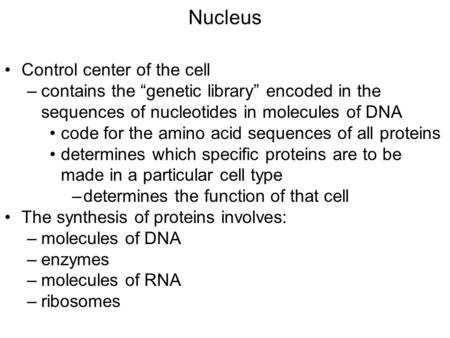 "Nucleus Control center of the cell –contains the ""genetic library"" encoded in the sequences of nucleotides in molecules of DNA code for the amino acid."
