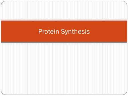 Protein Synthesis.