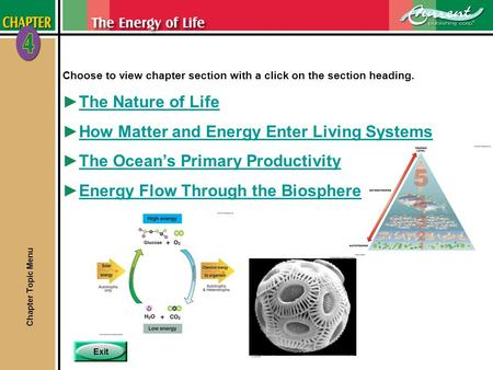 Exit Choose to view chapter section with a click on the section heading. ►The Nature of LifeThe Nature of Life ►How Matter and Energy Enter Living SystemsHow.