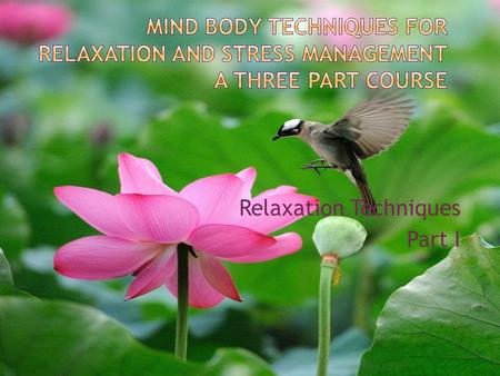 Relaxation Techniques Part I.  What is the mind-body connection?  What is stress?  Why is the mind-body connection important to our health?  What.