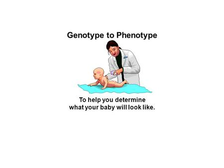 Genotype to Phenotype To help you determine what your baby will look like.