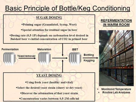 Basic Principle of Bottle/Keg Conditioning SUGAR DOSING  Priming sugar (Granulated, Syrup, Wort)  Special attention for residual sugar in beer  Dosing.