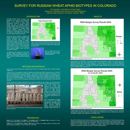SURVEY FOR RUSSIAN WHEAT APHID BIOTYPES IN COLORADO Terri Randolph, Scott Merrill and Frank Peairs Department of Bioagricultural Sciences and Pest Management.
